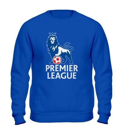 Свитшот Premier League