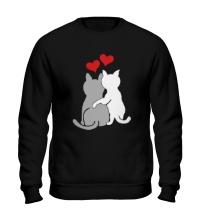Свитшот Влюбленные котята