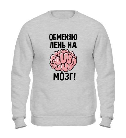 Свитшот Обменяю лень на мозг