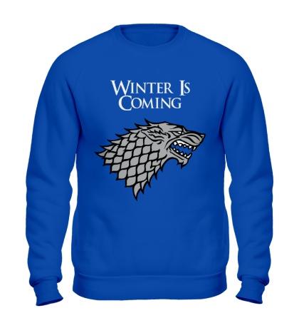 Свитшот Winter is Coming