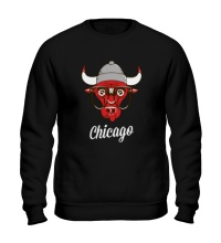 Свитшот SWAG Chicago Bull