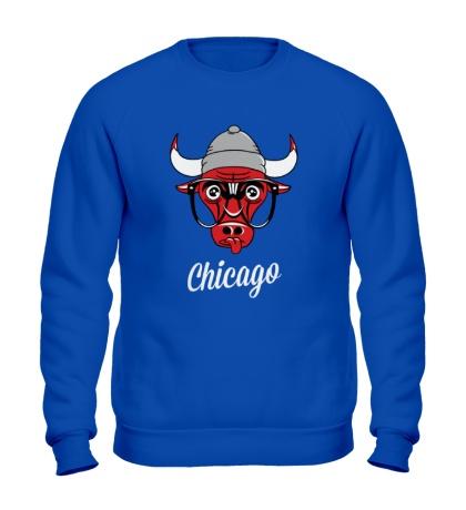 Свитшот SWAG Chicago Bull