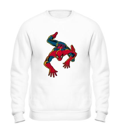 Свитшот Spider-Man