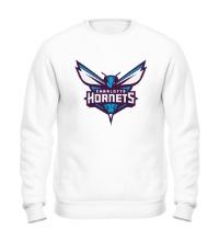 Свитшот Charlotte Hornets