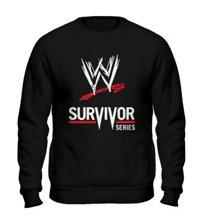 Свитшот WWE Survivor Series