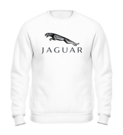Свитшот Jaguar