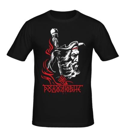 Мужская футболка Родолюбие