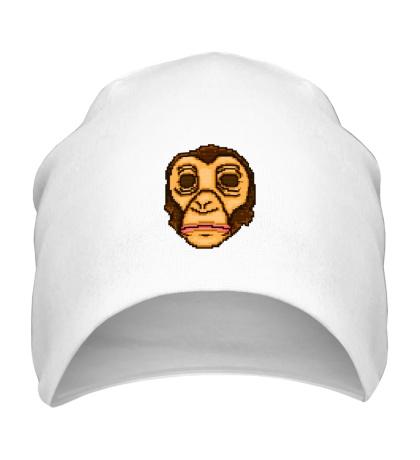 Шапка Willem Mask