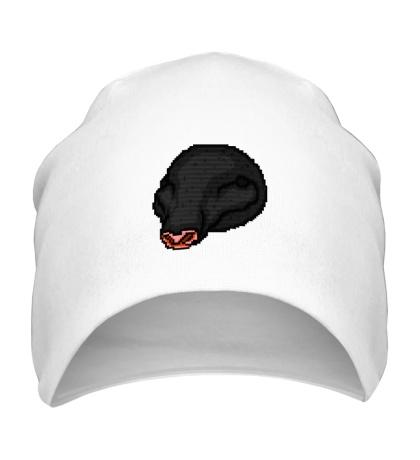 Шапка Oscar Mask