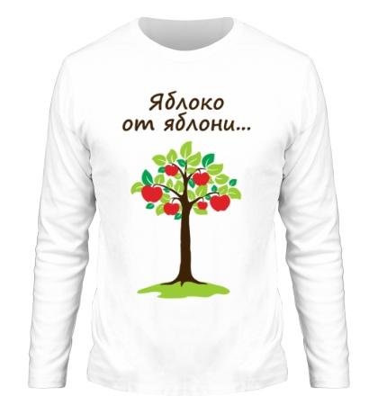 Мужской лонгслив Яблоко от яблони для родителя