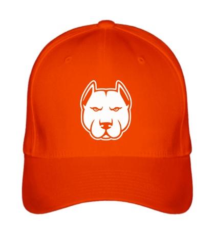 Бейсболка Суровый пёс