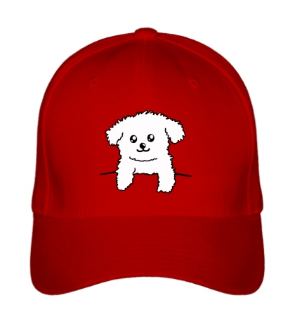 Бейсболка Карманный пёс