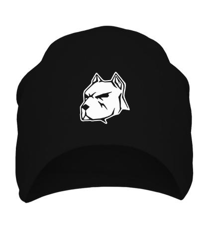 Шапка Пёс
