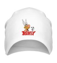 Шапка Asterix