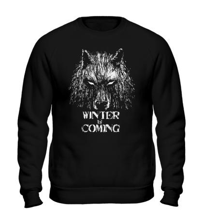 Свитшот Winter is Coming: Wild Wolf