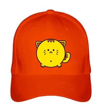 Бейсболка Пухлый котик