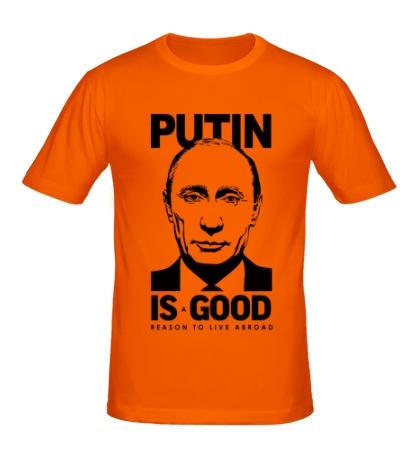 Мужская футболка Putin is good