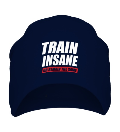 Шапка Train insane or remain the same