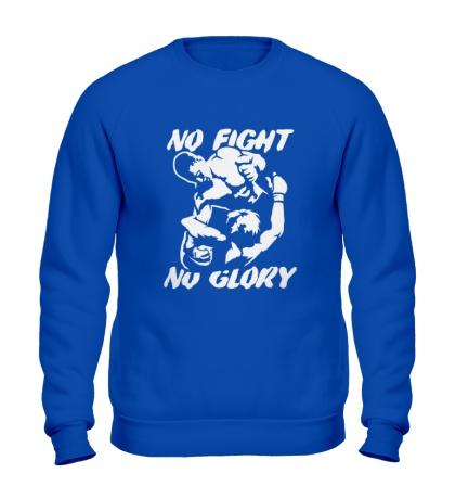 Свитшот No fight no glory