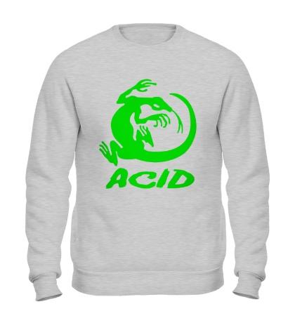 Свитшот Acid iguana