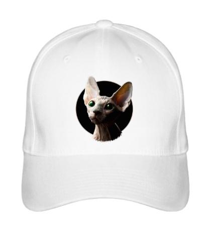 Бейсболка Глазастый кот сфинкс
