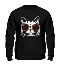 Свитшот Модный кот в очках