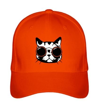 Бейсболка Модный кот в очках