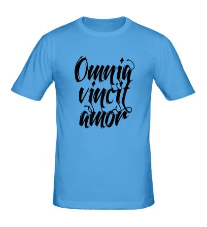 Мужская футболка Любовь побеждает все
