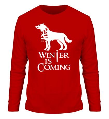 Мужской лонгслив Winter is Coming: Dog