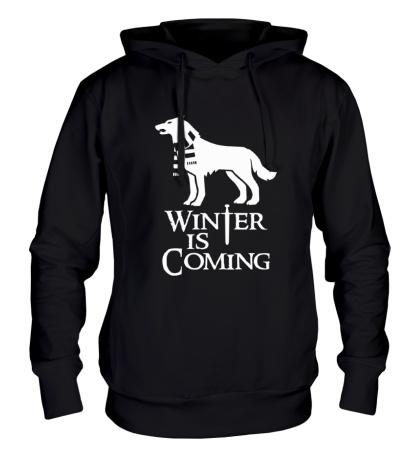 Толстовка с капюшоном Winter is Coming: Dog