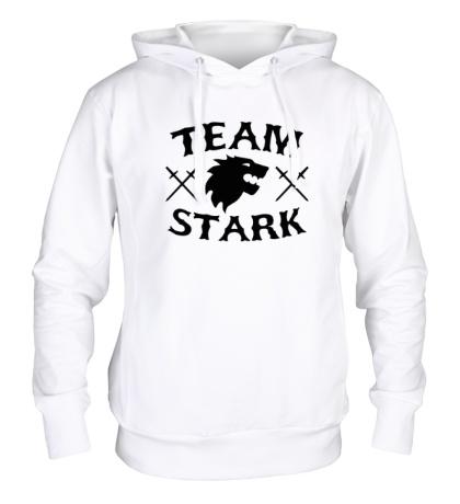 Толстовка с капюшоном Team Stark