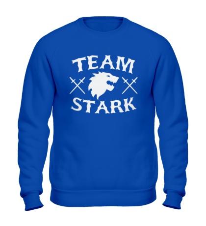 Свитшот Team Stark