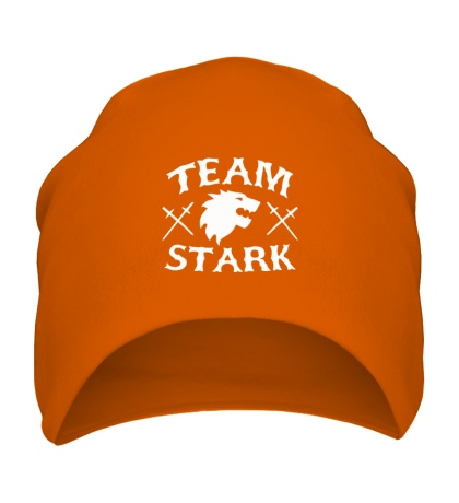 Шапка Team Stark