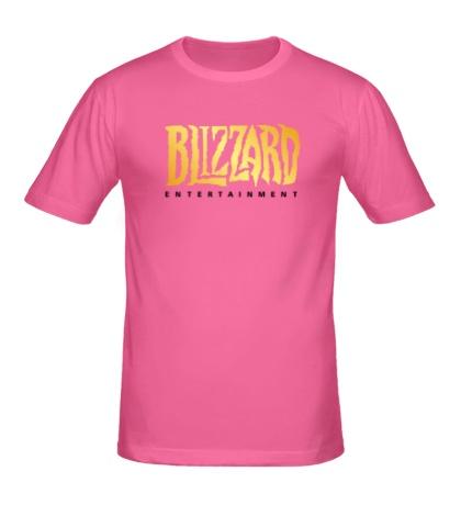 Мужская футболка Blizzard Entertainment