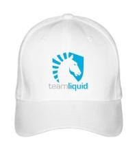 Бейсболка Team Liquid