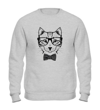 Свитшот Кот в очках