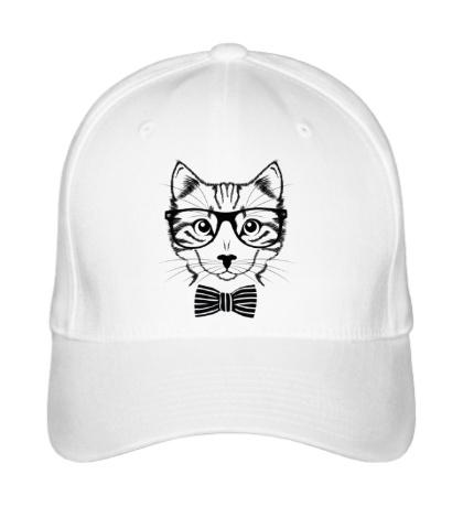Бейсболка Кот в очках