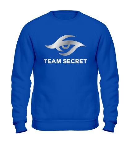 Свитшот Team secret