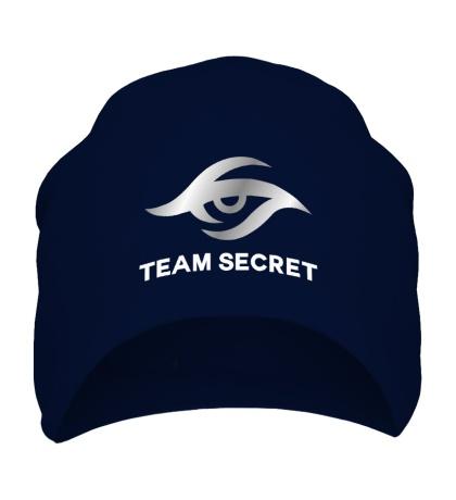 Шапка Team secret