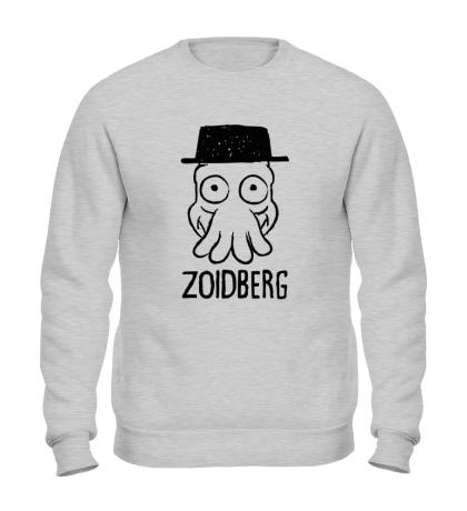 Свитшот Dr. Zoidberg