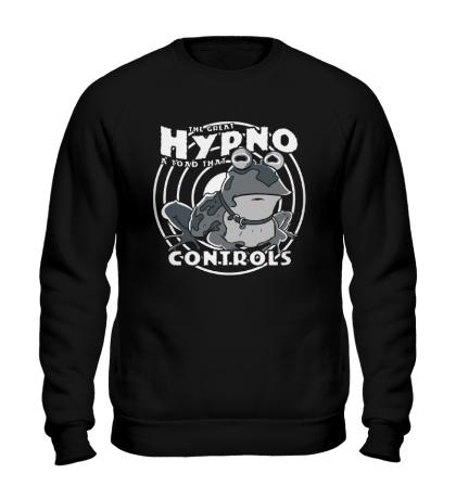Свитшот Hypno Controls