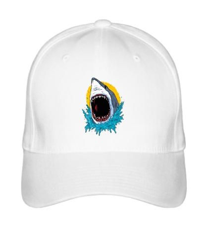 Бейсболка Дикая акула