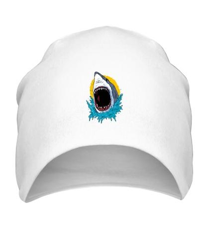 Шапка Дикая акула