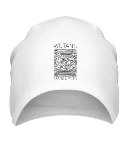 Шапка Wu-Tang Division