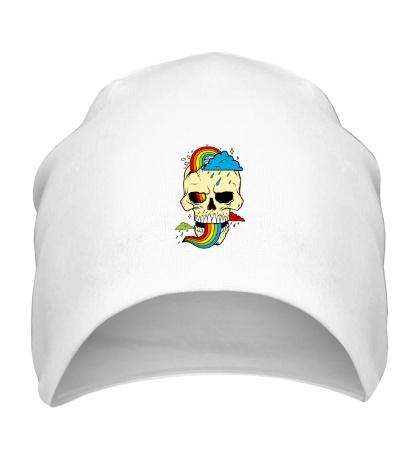 Шапка Красочный череп