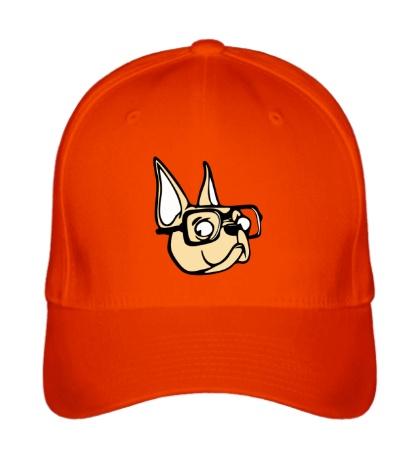 Бейсболка Пёс в очках