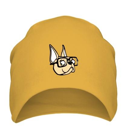 Шапка Пёс в очках