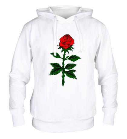 Толстовка с капюшоном Красная роза