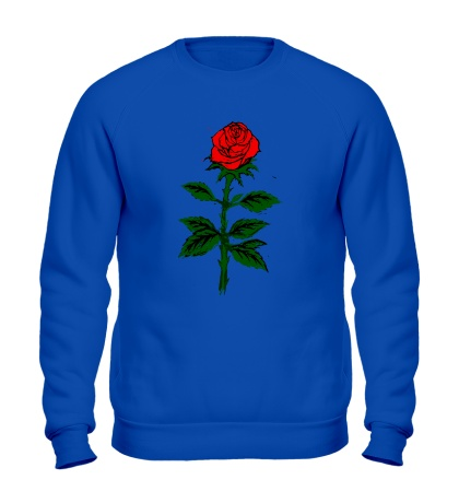 Свитшот Красная роза