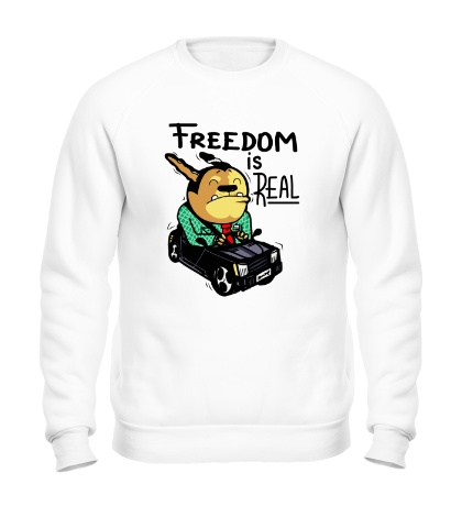 Свитшот Freedom is Real